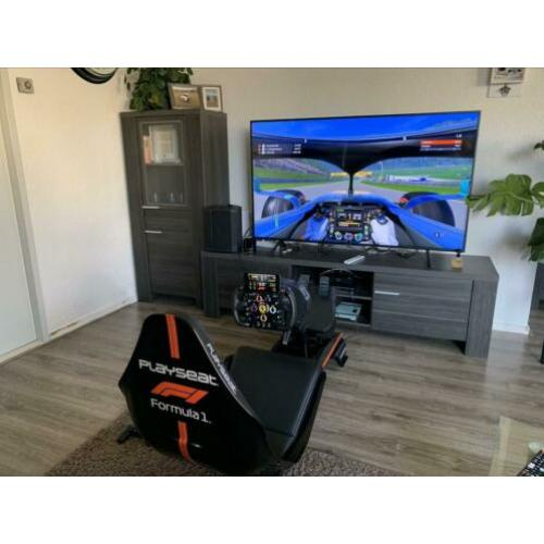 Playseat F1 ????